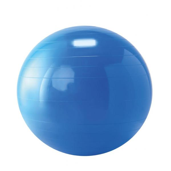 Therapy Ball - 65 cm Blue