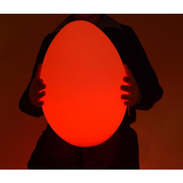 Colour Changing Egg - Large
