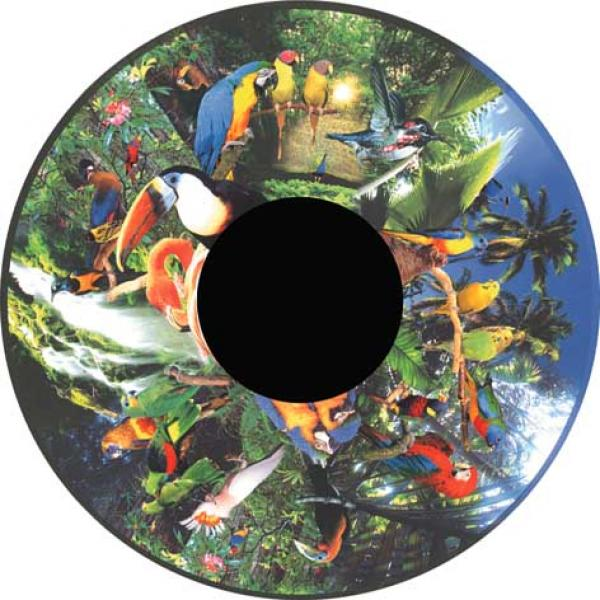 Magnetic Effect Wheel - Tropical Birds