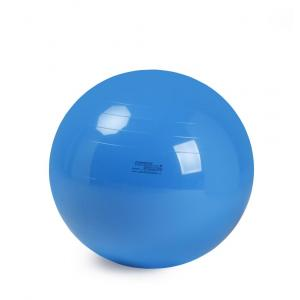 Therapy Ball - 95 cm Blue