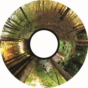 Magnetic Effect Wheel - Seasoned Woods