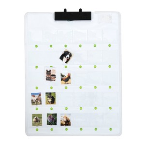 Recordable Talking Wall Chart